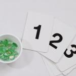 Montessori Inspired Counting Game