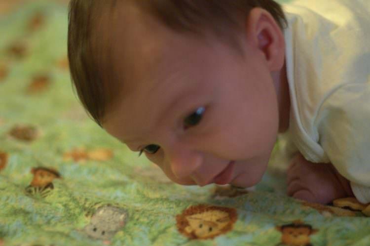 briefly lifts head developmental milestone
