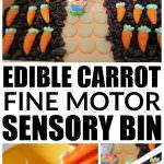Sensory Activities for Kids: Carrot Sensory Bin