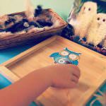 Owl Babies Counting Activity